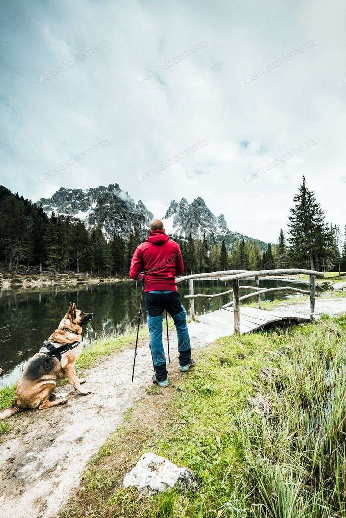 Trekking active man and dog looking at high mountains