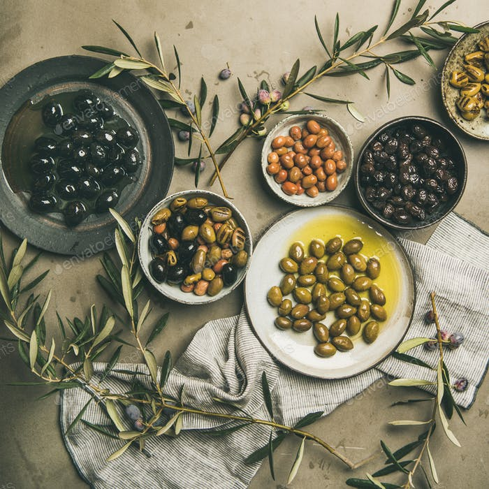 Mediterranean pickled olives and olive tree branches, square crop