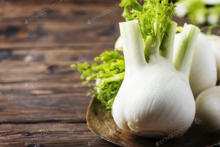 Raw fresh fennel