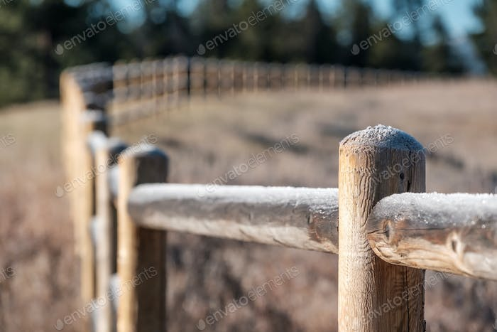 Hoarfrost on the fence