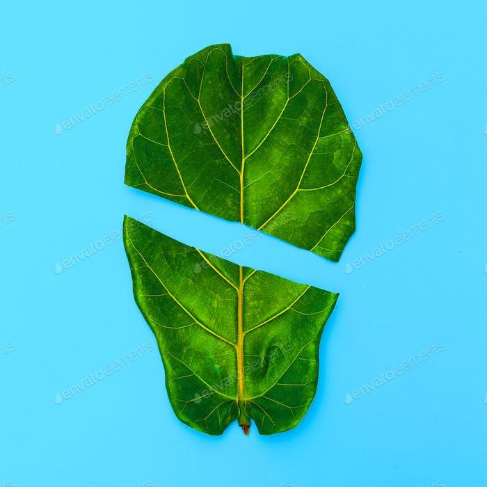 Half Leaf Fun Art. Green. Flat lay minimal