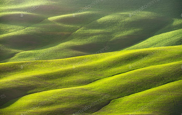 Abstract spring landscape, field and tracks texture. Tuscany, It