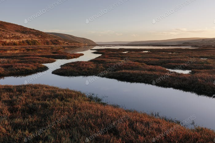 Intertidal estuary at dusk