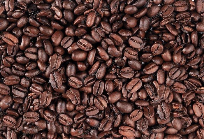 Coffee beans closeup