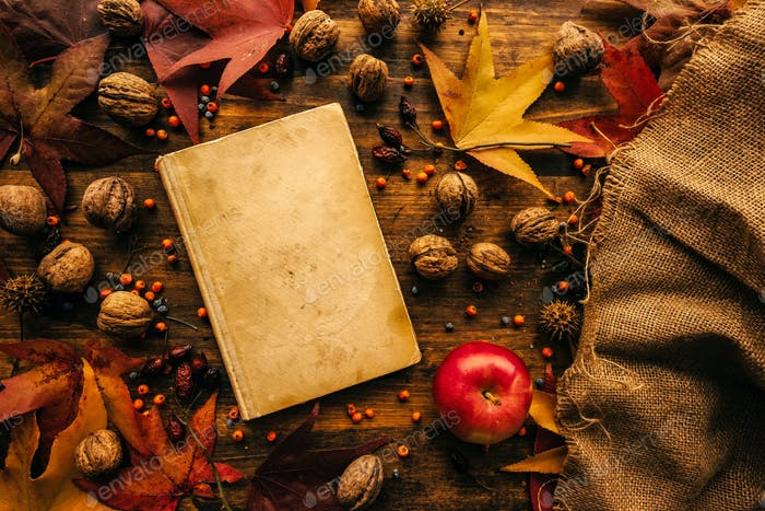 Flat lay top view vintage book with autumn decoration