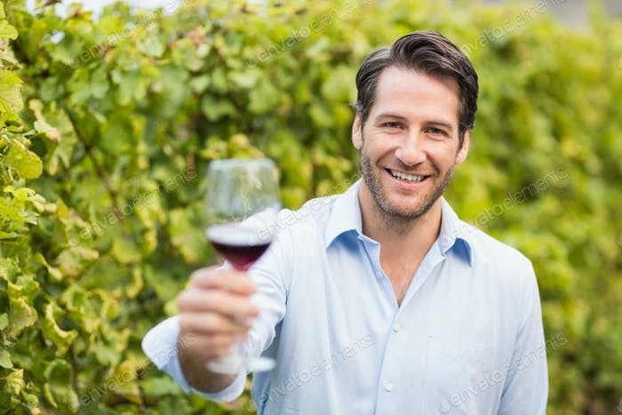 Young happy man smiling at camera and holding a glass of wine in the grape fields