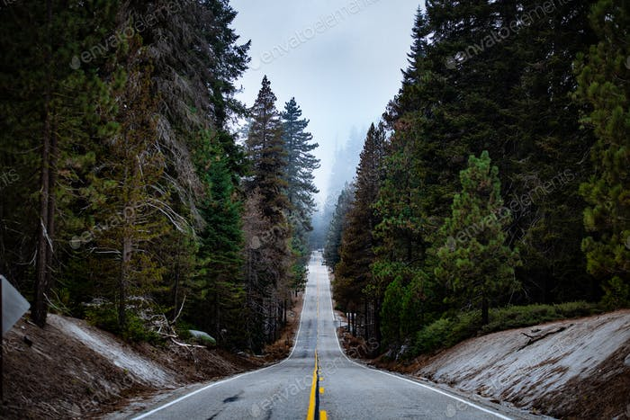 A straight steep road in Sequoia National Park, California, USA