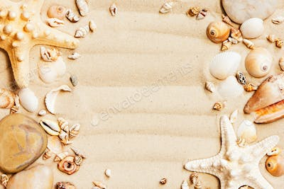 Beach Background with Seashells and Sand on the Sand