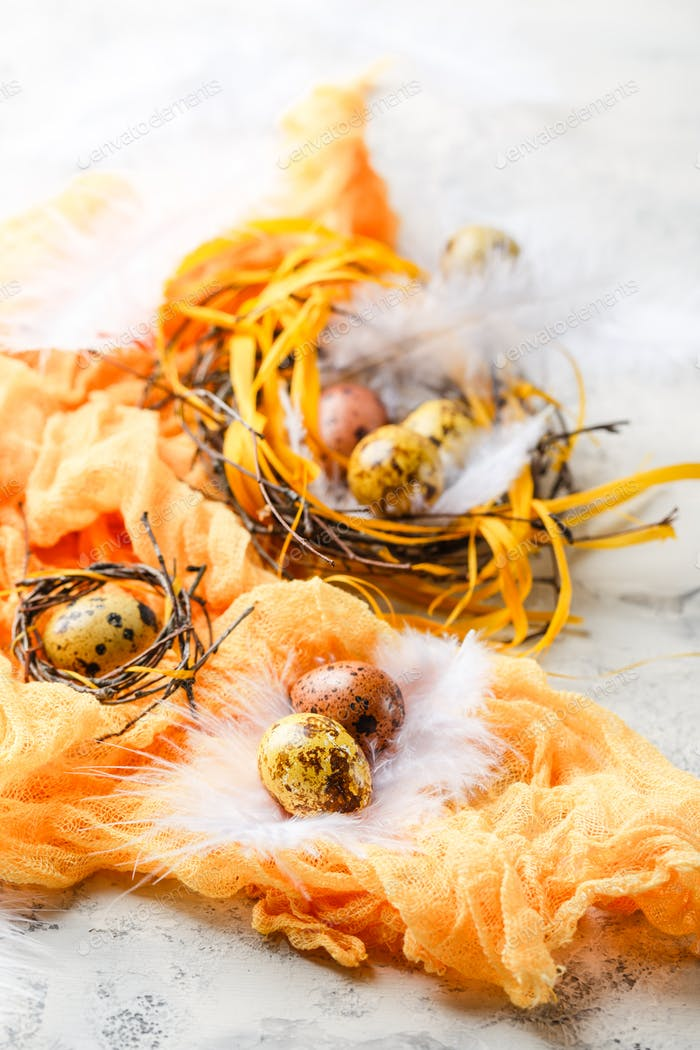 Huevos de Pascua en nido de pájaro. Huevos de Pascua de codorniz con plumas en nido sobre mesa blanca con espacio de copia.