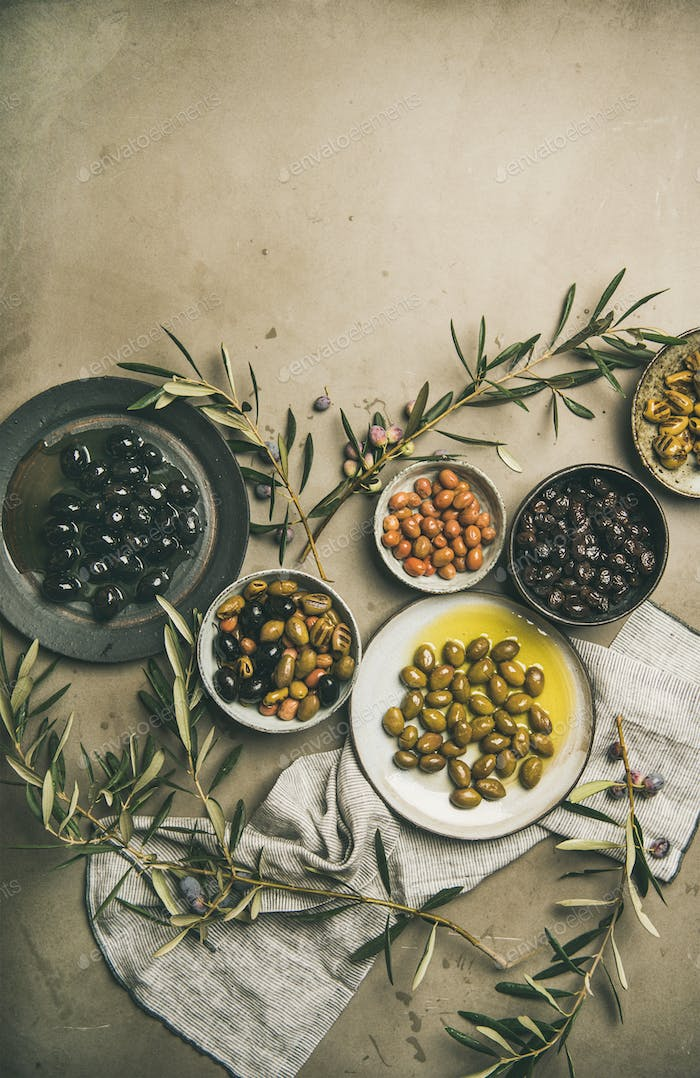 Various kinds of Mediterranean pickled olives and olive tree branches