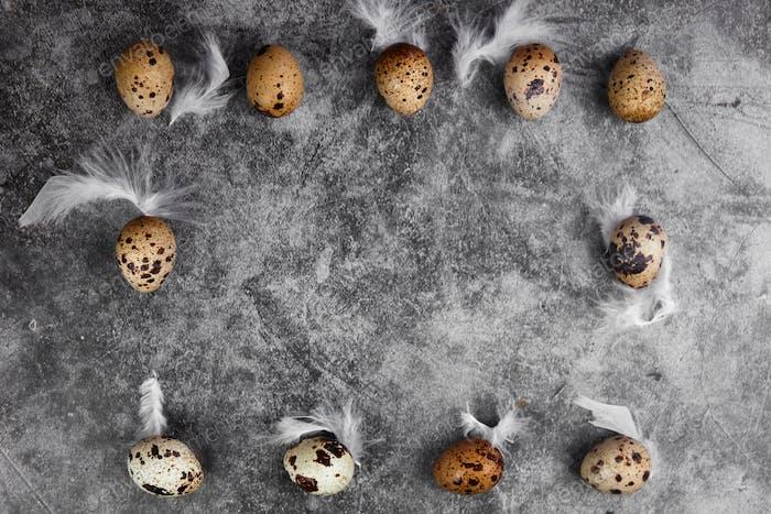 Quail eggs on dark background. Raw quail eggs.