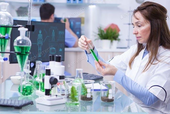 Seitenansicht der Wissenschaftlerin, die Forschung über Pflanzen, die eine grüne Lösung in einem Reagenzglas halten