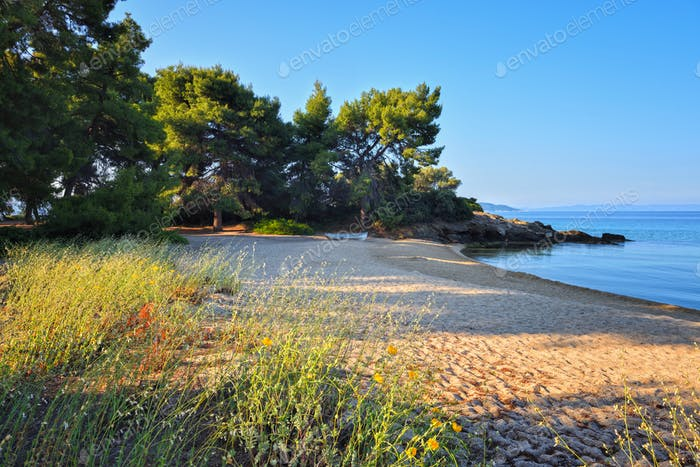 Landscape with deserted beach and clear water. Summer morning on