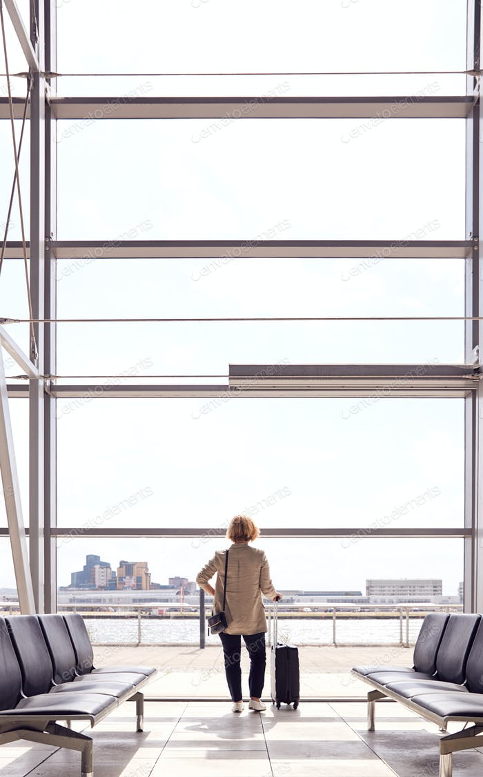 Rear View Of Businesswoman With Luggage Standing By Window In Airport Departure Lounge