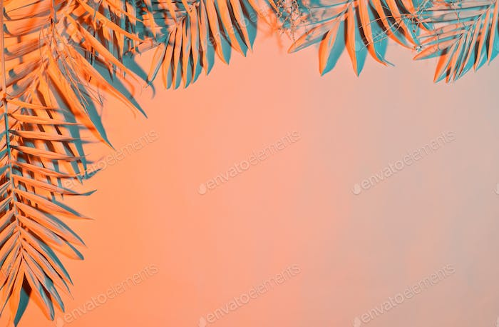 Pastel colored palm leaves