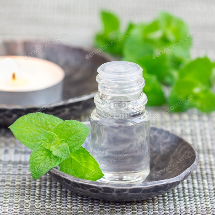 Peppermint essential oil in bottle, square format
