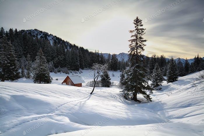 wooden cabin in snowy Alps
