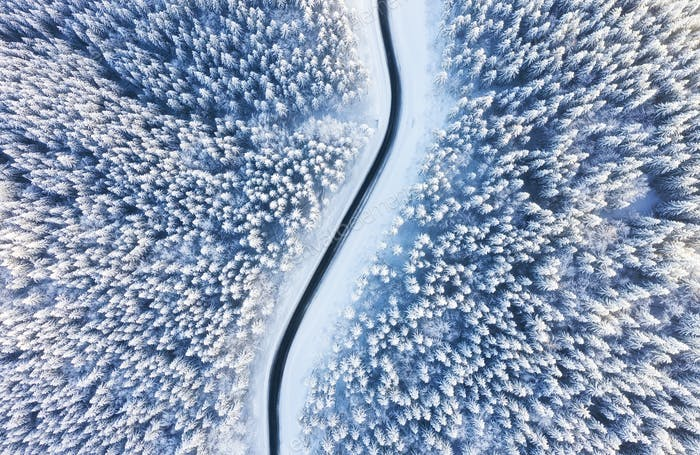 The road in the winter forest. Landscape from the air.