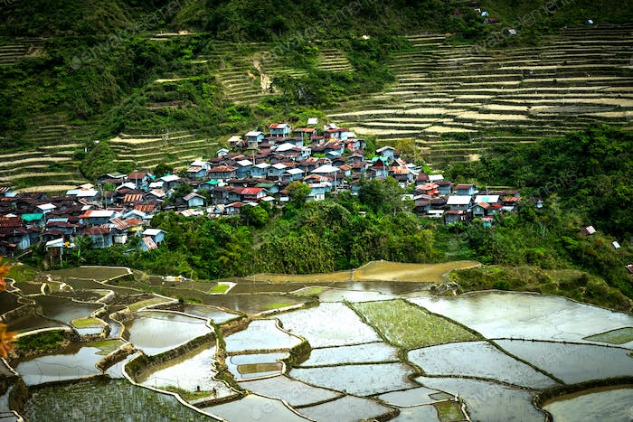 Village houses near rice terraces fields. Amazing abstract textu