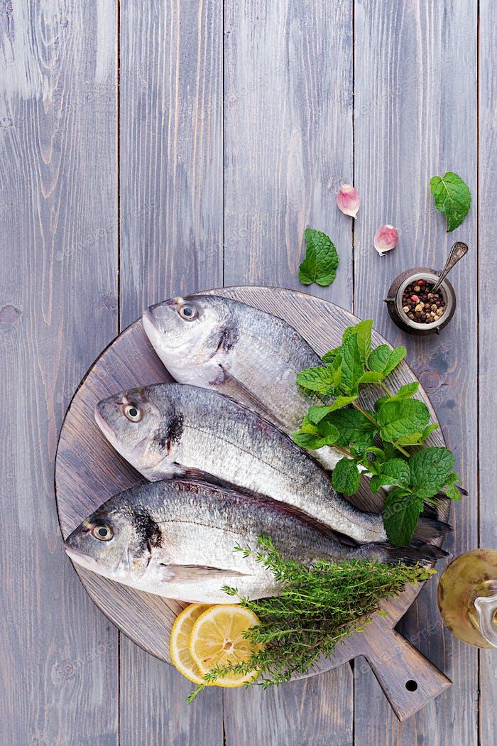 Roher Dorado-Fisch mit grünen Kräutern Kochen auf Schneidebrett. Ansicht von oben
