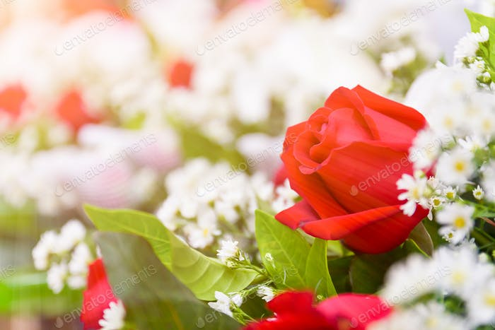 Red roses bouquet-2