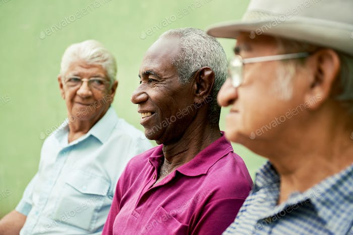 Gruppe von alten schwarzen und kaukasischen Männern im Park sprechen