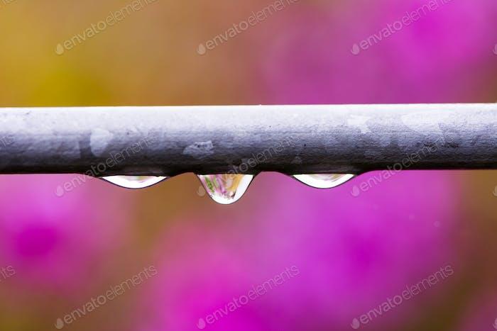 Regentropfen auf einem Eisenstab