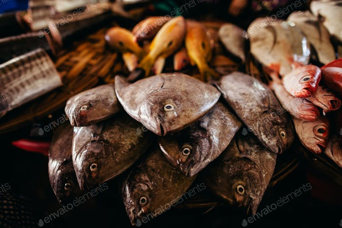 Roher Fisch in Scheiben geschnitten und auf dem Straßenmarkt geschnitten
