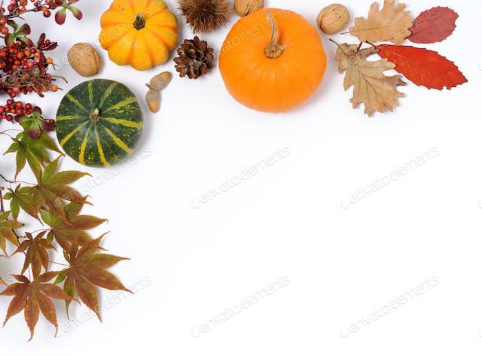 Thumbnail for autumnal frame