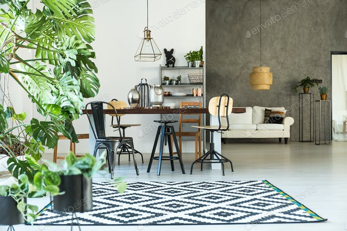 Modern interior with pattern carpet