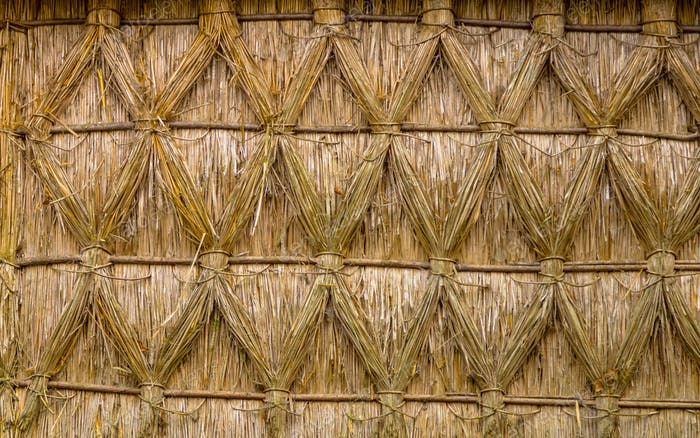 Intertwined Thatching of Reed on on a Cottage
