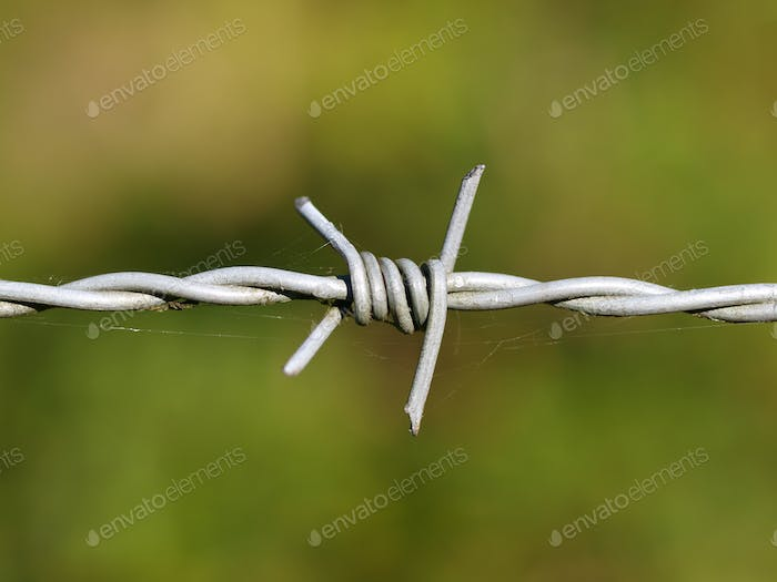 detail barbed wire
