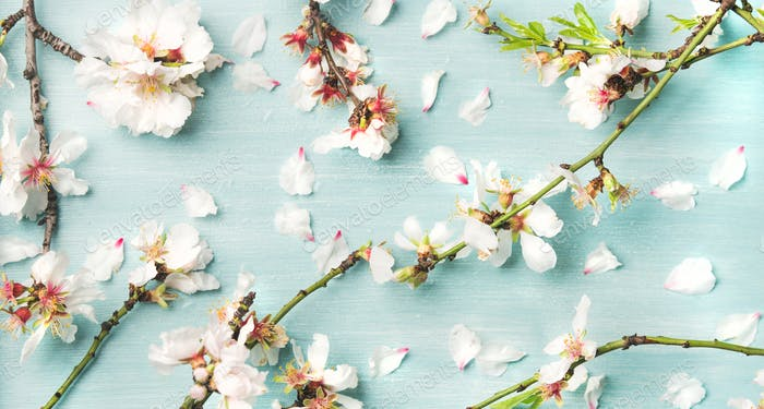 Spring floral background and texture with white almond flowers