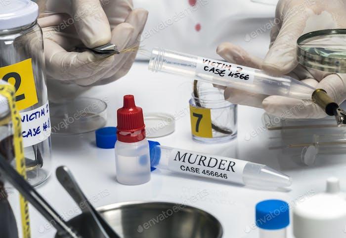 Spezialpolizei analysiert Haare des Mordopfers mit einer Pinzette, konzeptionelles Bild