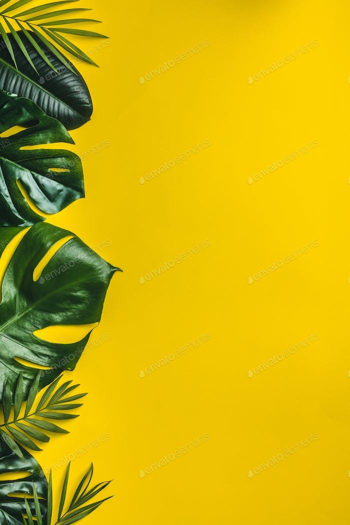 Tropische Blätter auf gelbem Hintergrund