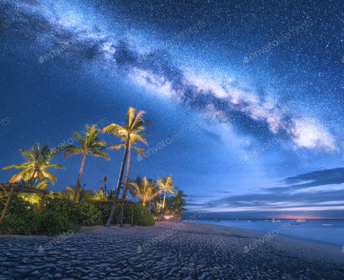 Milky Way over the sandy beach with palm trees and sunbeds