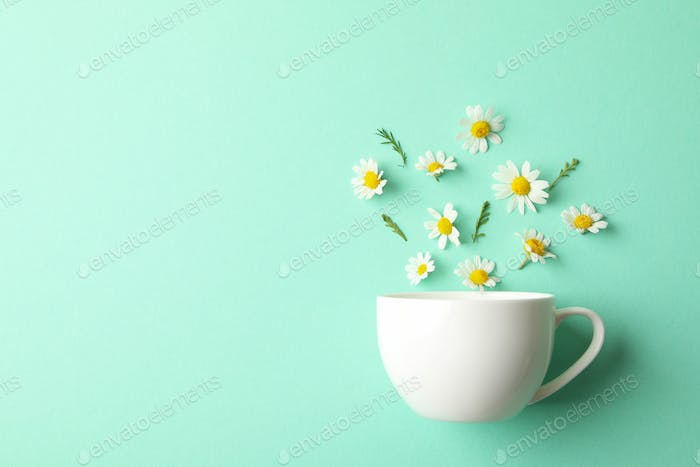 Cup and chamomiles on mint background. Chamomile tea