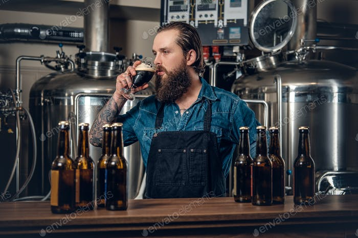 A man manufacturer tasting beer in the microbrewery.