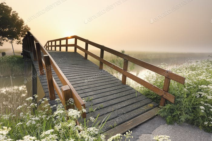 bridge over river at summer sunrise