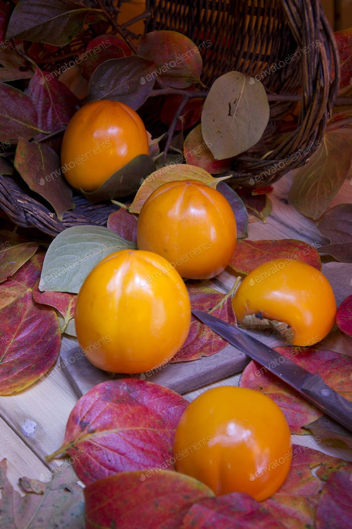 The Fruit Of Persimmon