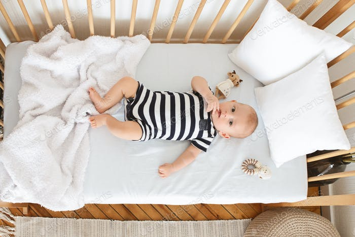 Curious infant baby lying in crib and chewing his finger