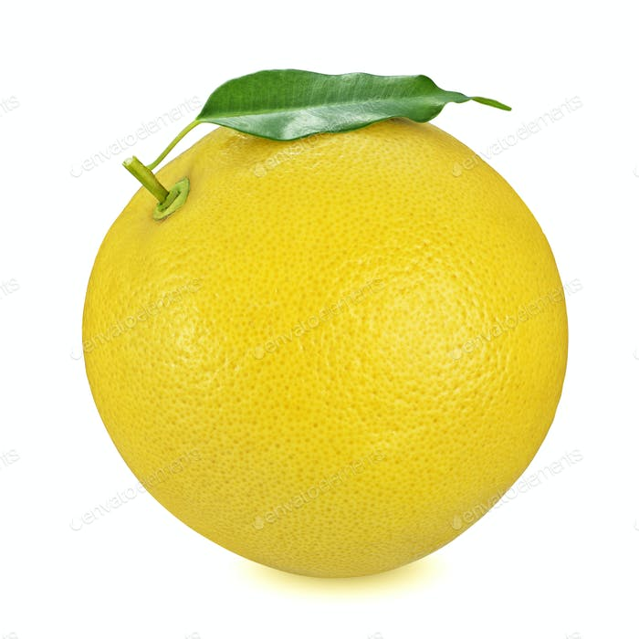 Yellow grapefruit isolated on white background