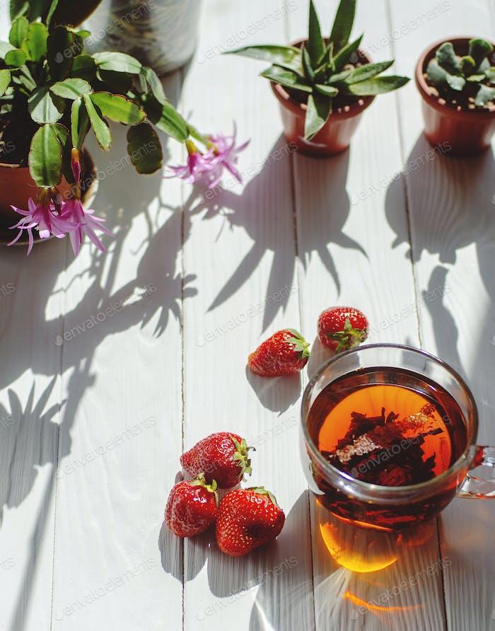 Nahaufnahme Bild von Glas Tasse Tee, rote Erdbeeren, Blumen in Töpfen auf hellem Holzhintergrund.