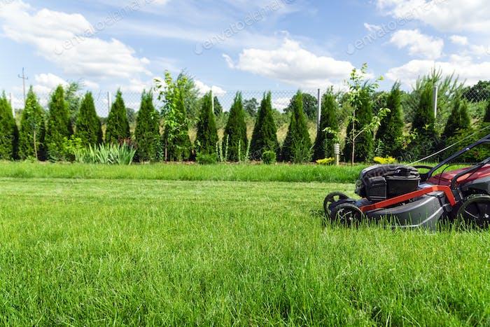 Rasenmähen im Hinterhof