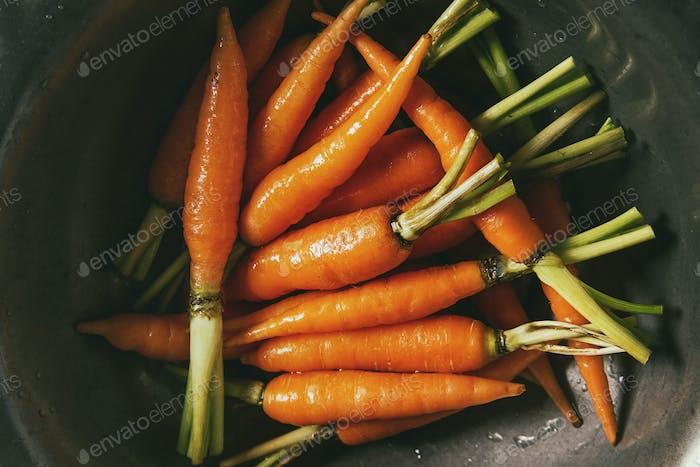 Küchenkräuter und Karotten