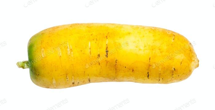 frische Bio-usbekische gelbe Karotte isoliert