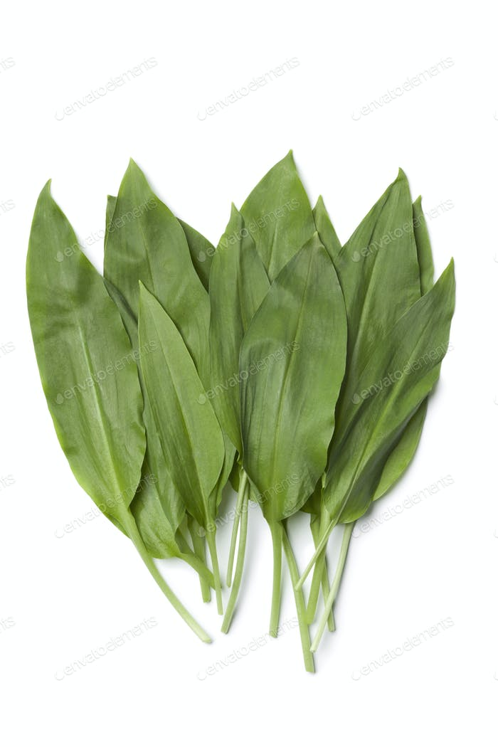 Fresh Ramson leaves