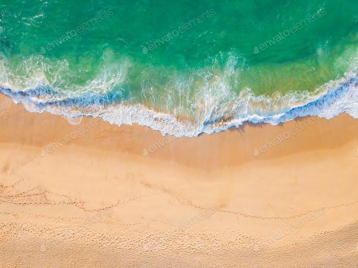 Romántica puesta de sol en una Playa tropical con palmeras