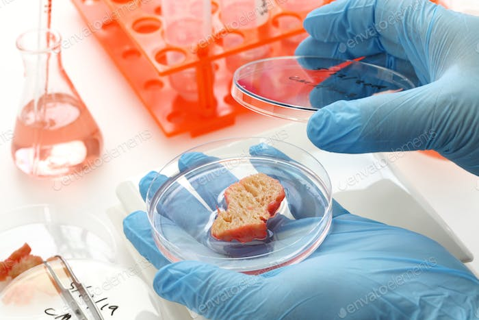 cultured meat making image, lab grown meat concept