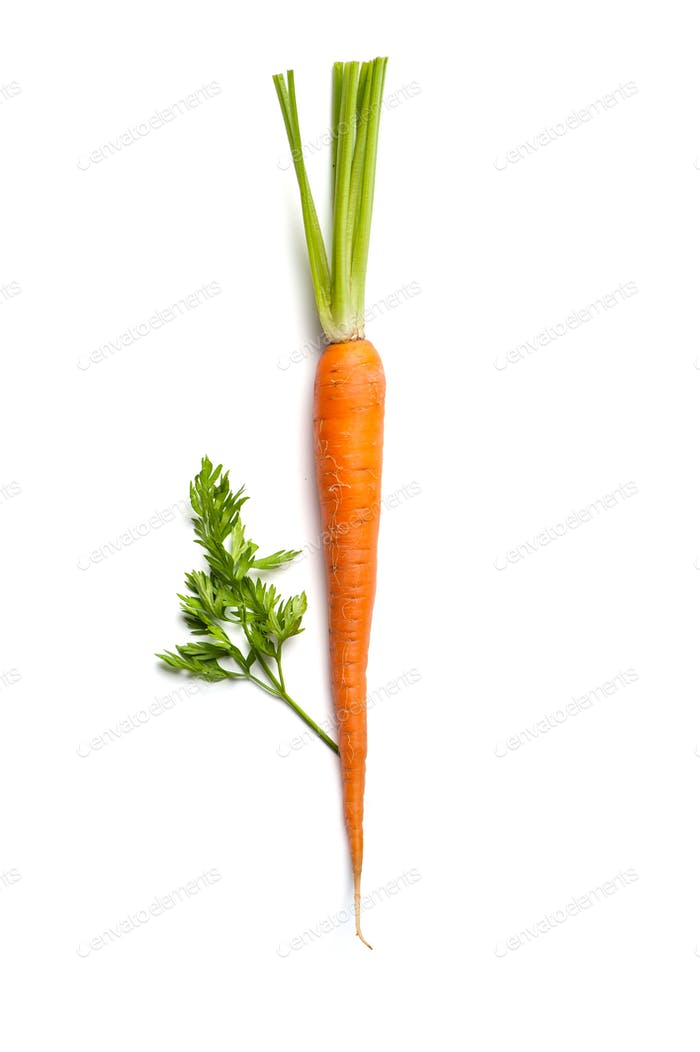 Young carrots with a tops isolated on white background.
